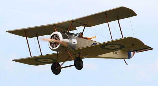Sopwith Pup in Flight
